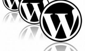 PlugMatter WordPress Plugins Black Friday Discount Coupon: 50% Off