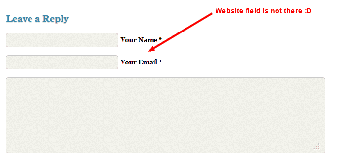 Remove Website Link comment form